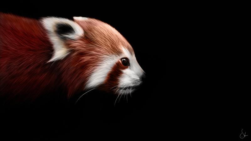 Firefox Art