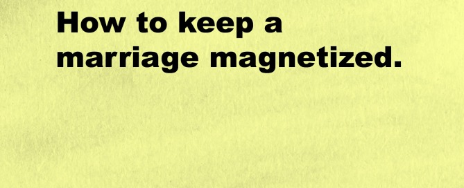 Magnetic Sex Takes one Ingredient