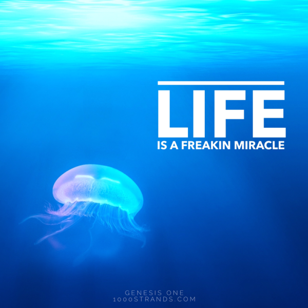 Life is a freakin miracle | 1000strands.com